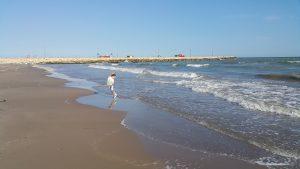 Denizi Sevmek